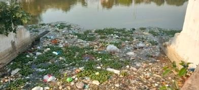 મ્યુનિસિપલ કમિશનરને રજૂઆત કરાઈ વડોદરાના સરસિયા તળાવનું યુદ્ધના ધોરણે રિનોવેશન કરાવવાની માંગ