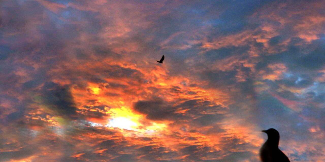 આ તસવીર આગના ગોટાની નહીં, પરંતુ કુદરતે ઢળતી સંધ્યાએ આકાશમાં ભરેલા રંગોની છે